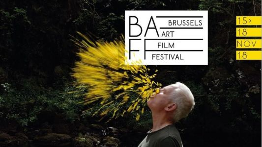 Onze films en compétition au Brussels Art Film Festival